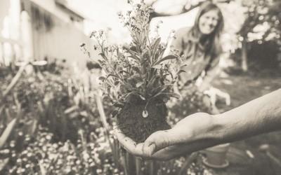 Selbstachtung zu innerem Wachstum?