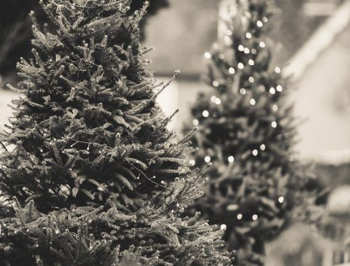 Besinnliche Weihnachten?